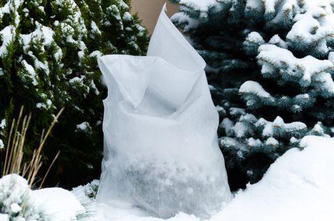 Zimný ochranný návlek na rastliny 100x160 cm